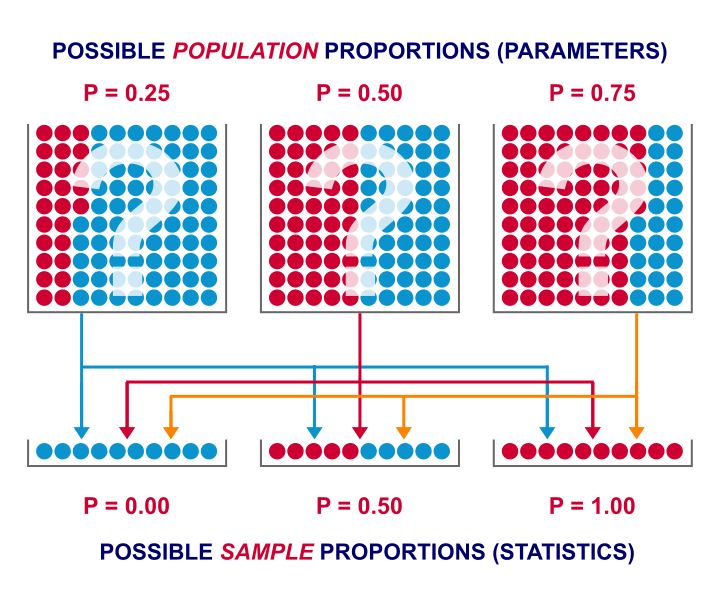 Population Parameter Versus Sample Statistic 1