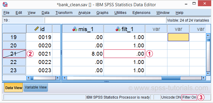 SPSS Active Filter In Data View
