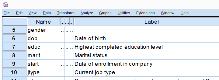 SPSS Bank Clean Variable View