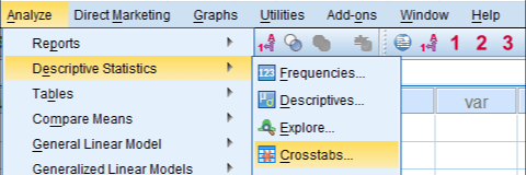 SPSS Chi-Square Independence Test Dialog