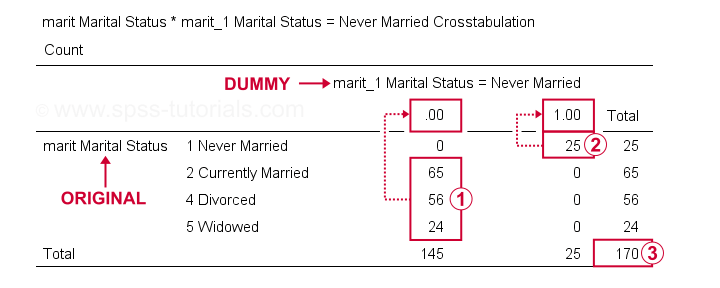SPSS Create Dummy Variables Check Results 1