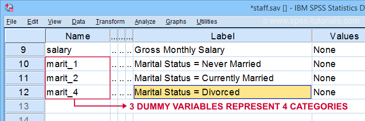 SPSS Create Dummy Variables Result 1