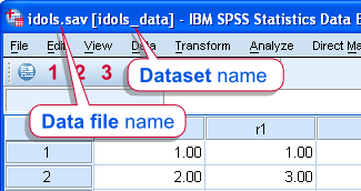 SPSS Dataset versus Data File