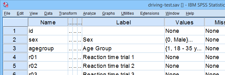 SPSS Driving Test Example Data File