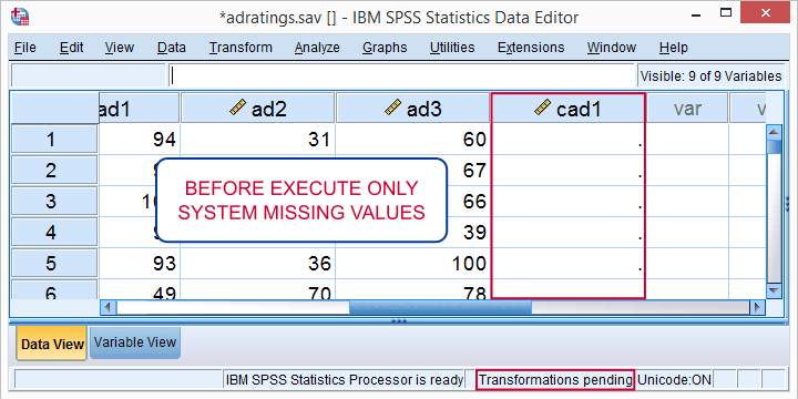 Transformations Pending in Data View After Running Transformation But Not EXECUTE