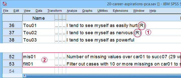SPSS Factor Analysis Promax Rotation Variable View