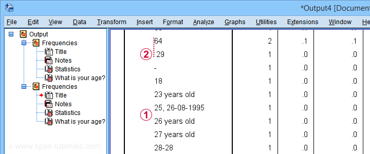 SPSS Frequency Table Age