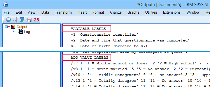 SPSS Label Cleaning Tool Output 1