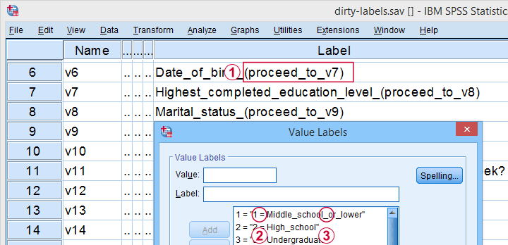 SPSS Label Cleaning Tool Variable View