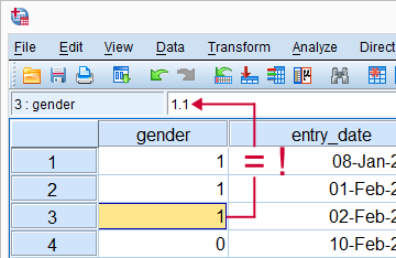 SPSS Numeric Variables Hidden Decimals in Data Editor