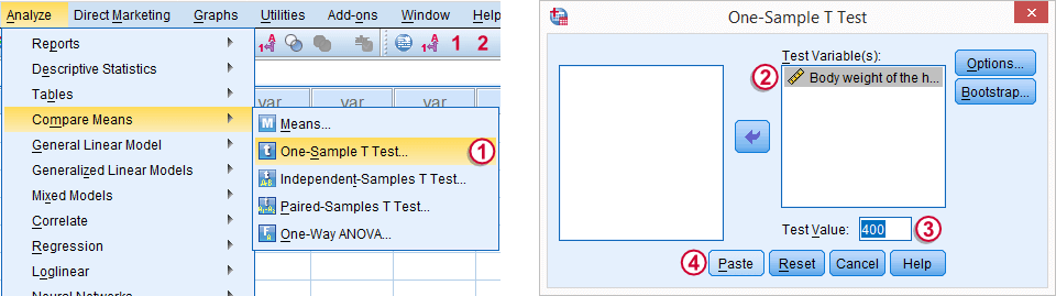 SPSS One-Sample T-Test Dialog