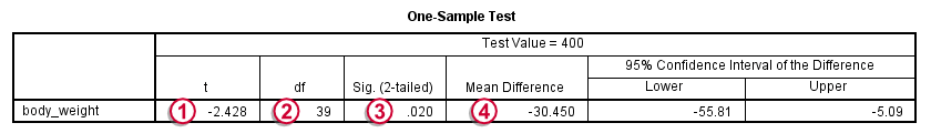 SPSS One Sample T-Test Output