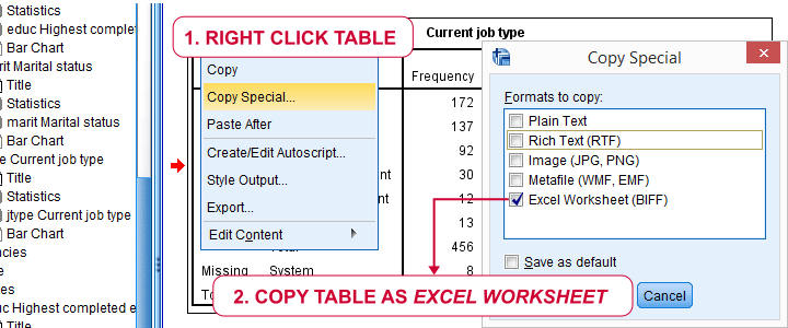 SPSS Output Table - Copy Special To Excel