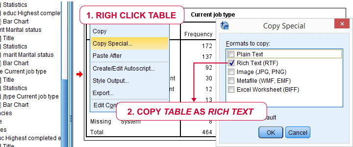 SPSS Output Table - Copy Special To WORD