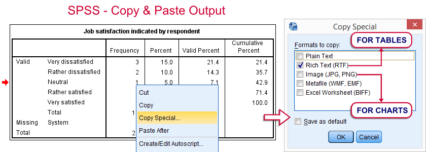 SPSS - Copy Paste Output Items