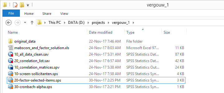 Screenshot of well organized SPSS project folder