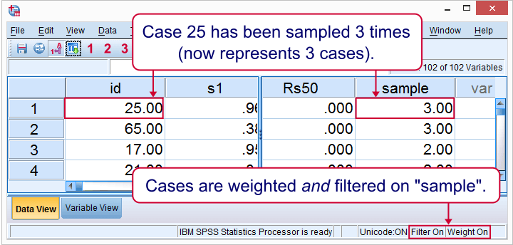 SPSS Sampling Basics - Weighted Cases