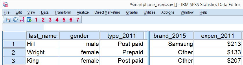 SPSS Smartphone Users Data - Data View