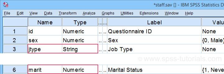 SPSS Staff Data Variable View