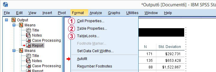 SPSS Table Editor Format Menu