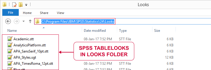 SPSS TableLooks in Looks Subfolder