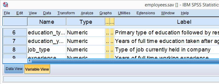 SPSS Variable View in Old Interface