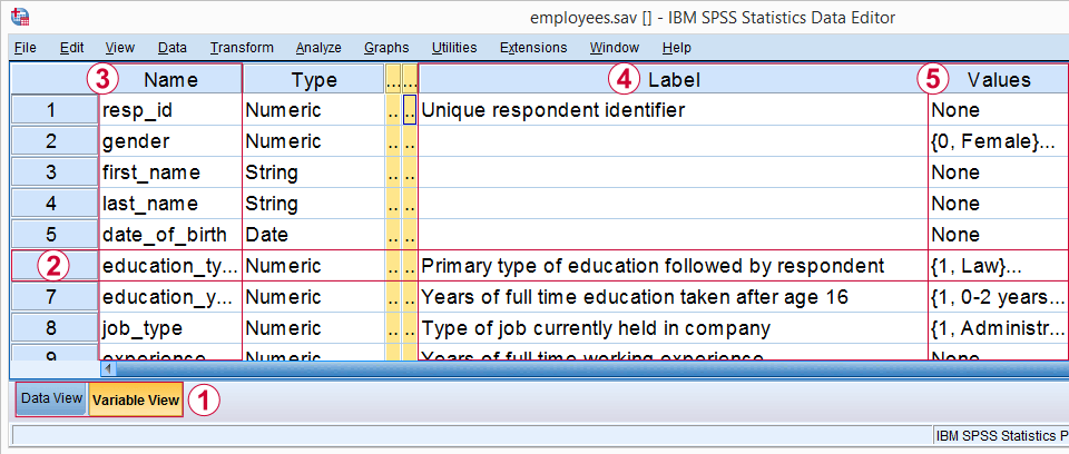 SPSS Variable View with Variables, Variable Labels and Value Labels Pointed Out