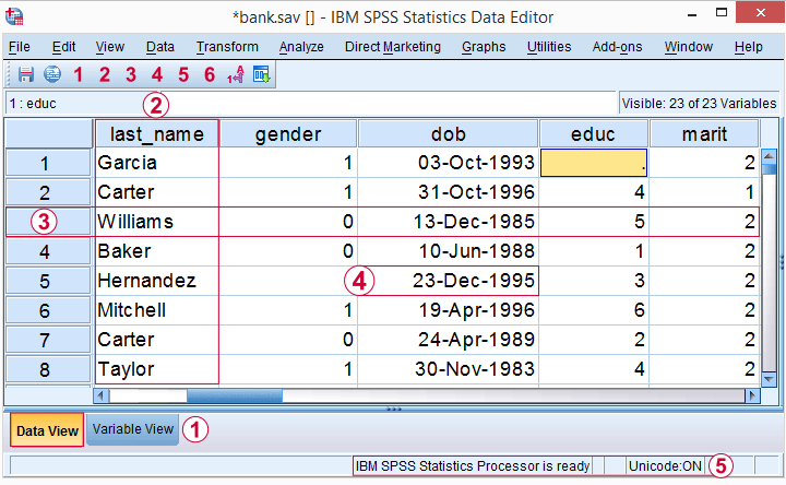 SPSS Data View with Variables, Cases and Values Pointed Out
